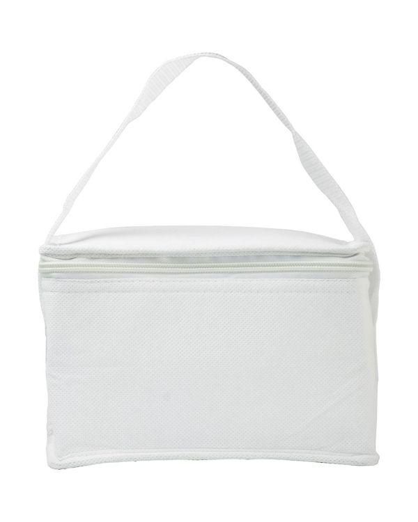 Nonwoven Small Cooler Bag.