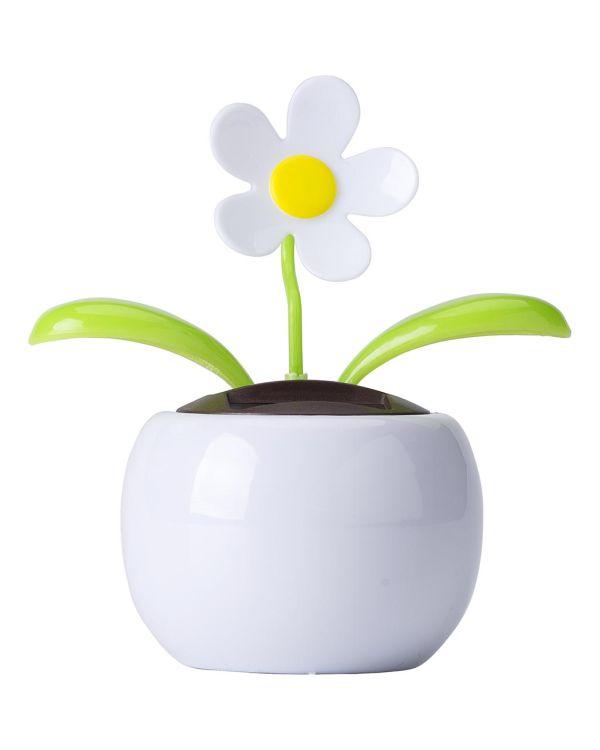 Solar Flower