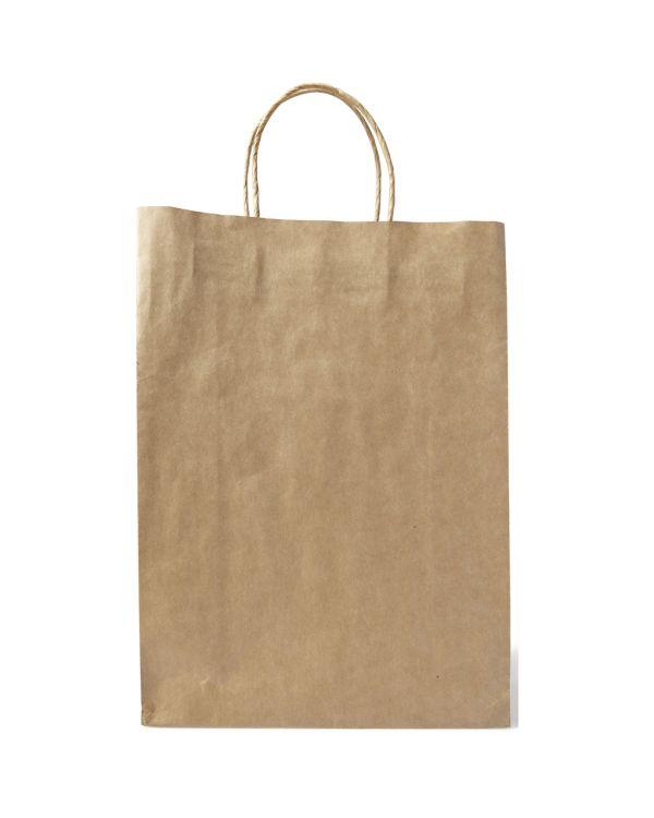 Paper Bag, Large
