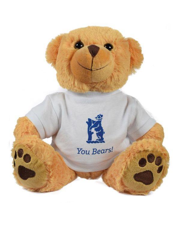 15Inch Dexter Bear With T Shirt