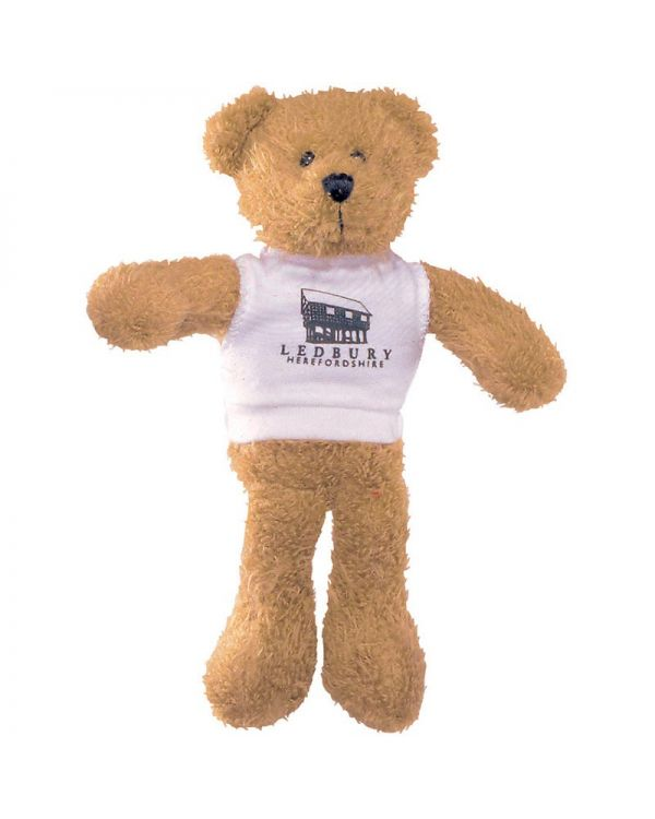 7Inch Scraggy Bear With T Shirt