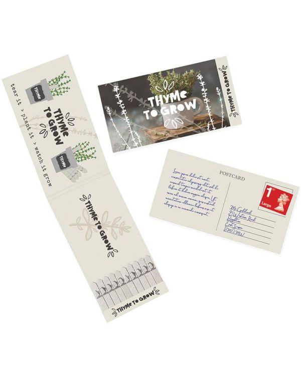 Postcard Seedsticks