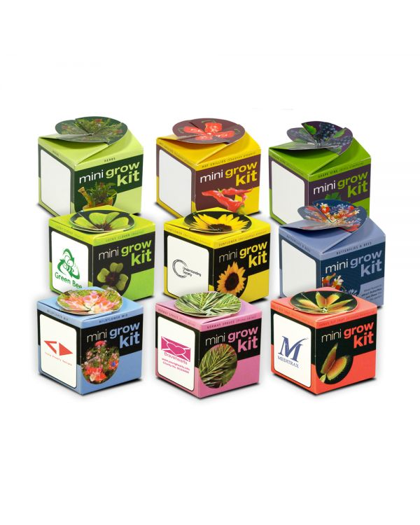 Green & Good Tiny Terracotta Cube