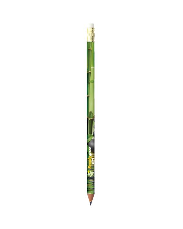 BIC Evolution Digital Ecolutions pencil