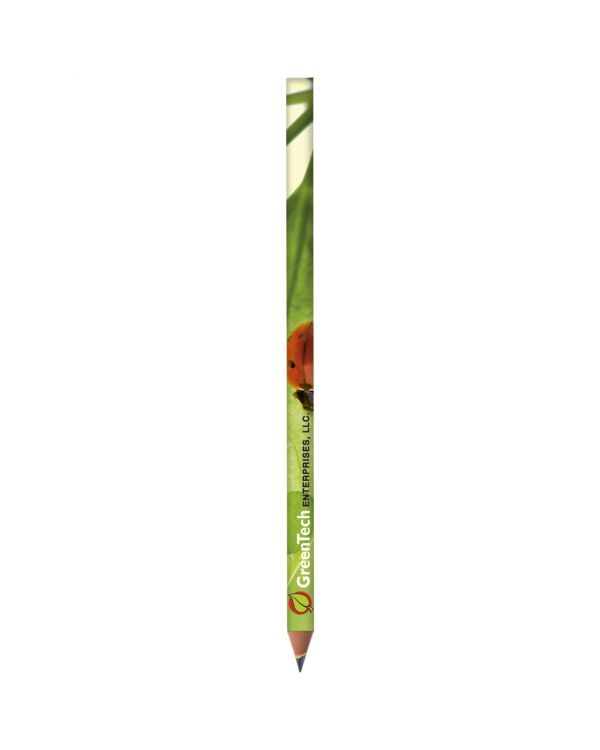 BIC Evolution Digital Ecolutions Pencil Cut