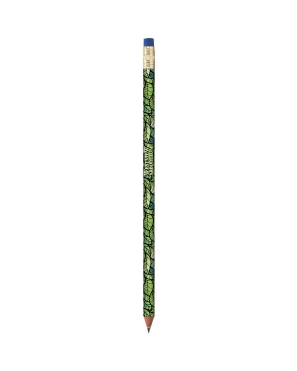 BIC Evolution Digital Colour Connection Ecolutions Pencil