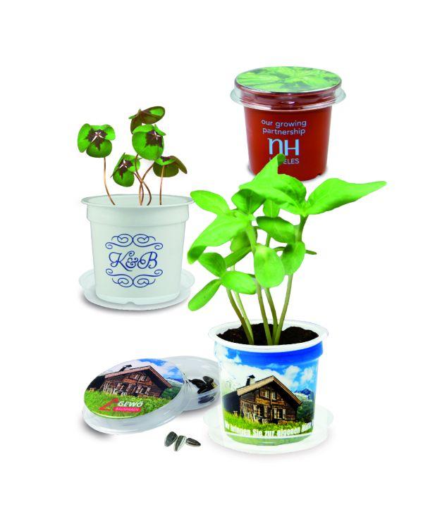 Patent Plant Pot