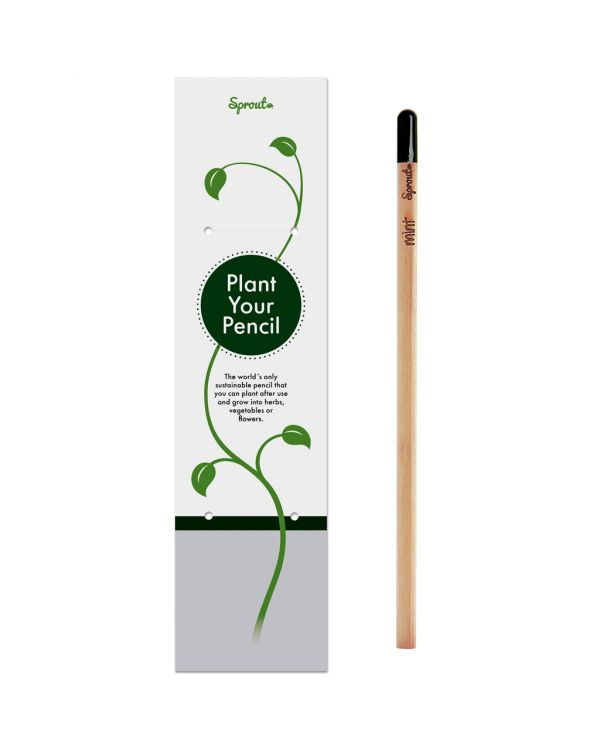 Sprout | Pencil in single packaging