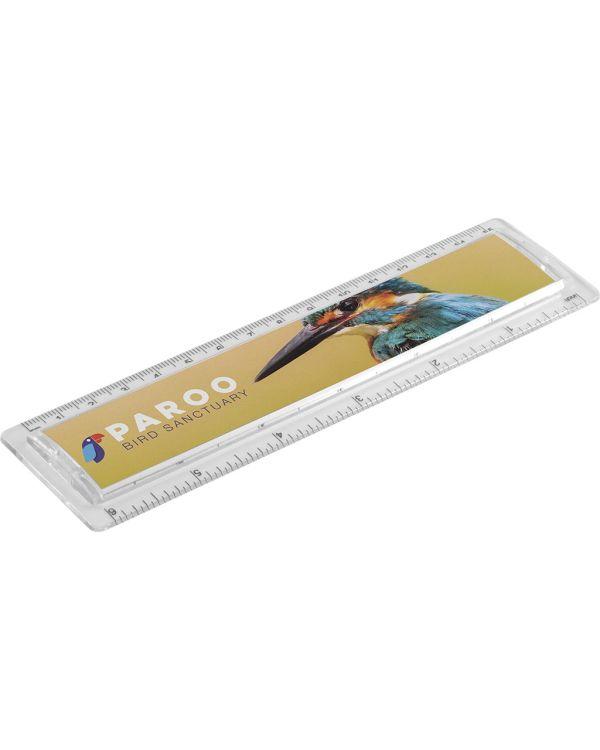 Picto 15cm/6 Inch Ruler