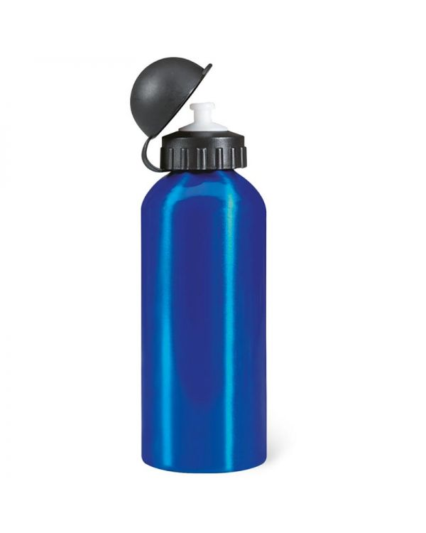 Biscing Metal Drinking Bottle (600 ml)