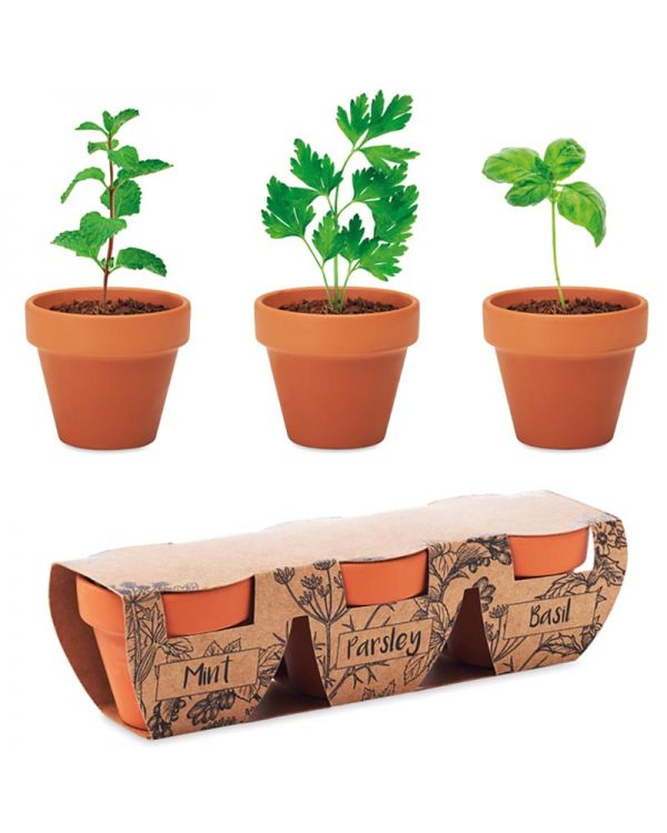 Flowerpot Terracotta 3 Herb Pot Set