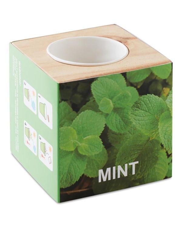 """Menta Herb Pot Wood """"Mint"""""""