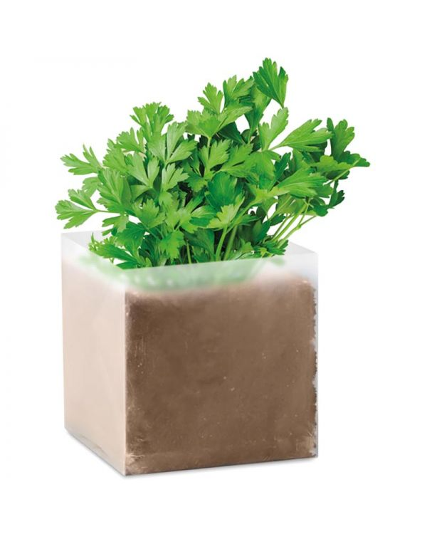 """Parsely Compost With Seeds """"Parsley"""""""