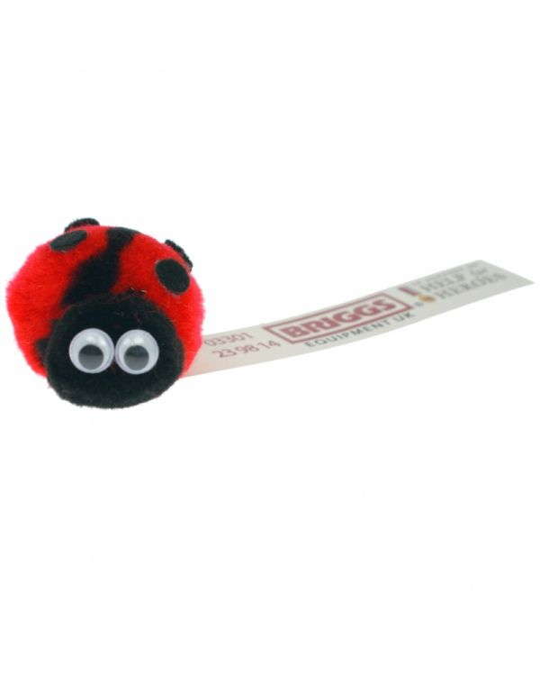 Lady Bird Bug