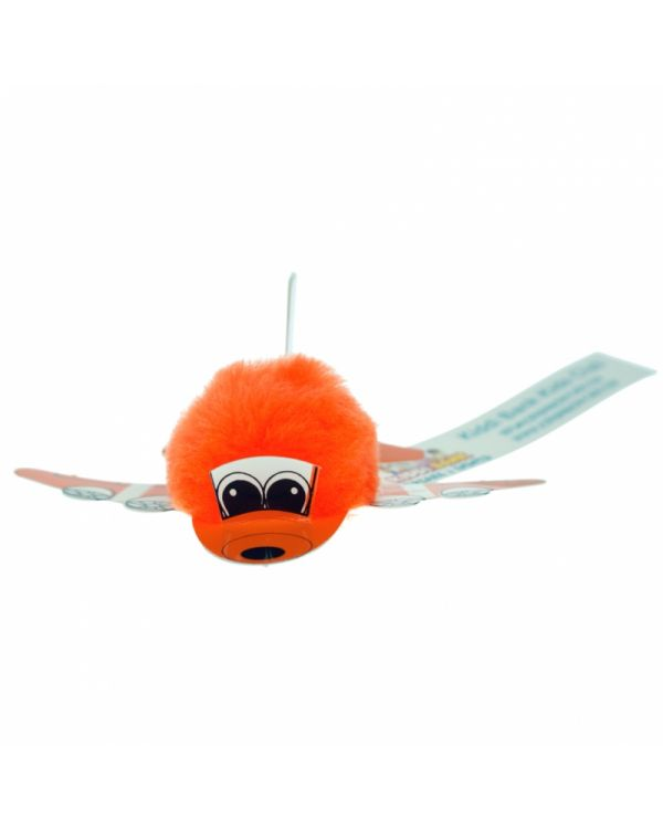 Plane Bug