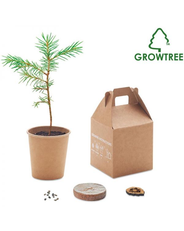 Pine Tree Set - Growtree Collection
