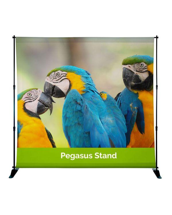 Pegasus Video Conference Backwall